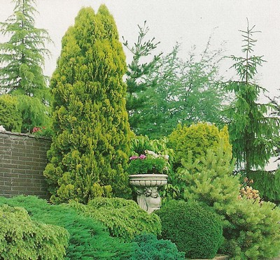 Le beau jardin des astuces pour bien conserver et soigner for Conseil plantation jardin